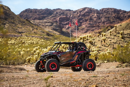 Polaris RZR with RBP Wheel 50R COBRA